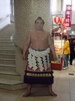 軽量を活かした速い相撲が魅力!横綱日馬富士