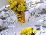 結婚式・披露宴でのスピーチの種類
