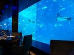 Ocean Restaurant by Cat Cora (シンガポール)