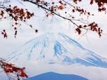 登拝を認めてきた「富士山」
