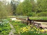身も心も癒される…温泉保養地バート・ヴェーリスホーフェン (ドイツ)
