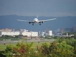 飛行機が欠航する可能性があるときは、事前に確認を!