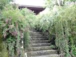 鎌倉は歴史ある寺社が目白押し