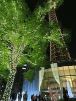 横浜マリンタワー(山下)