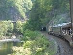 トロッコ列車で渓谷美を堪能! わたらせ渓谷鐵道