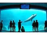 第3位 名古屋港水族館(愛知県)