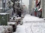 大雪で被害に遭ったら?