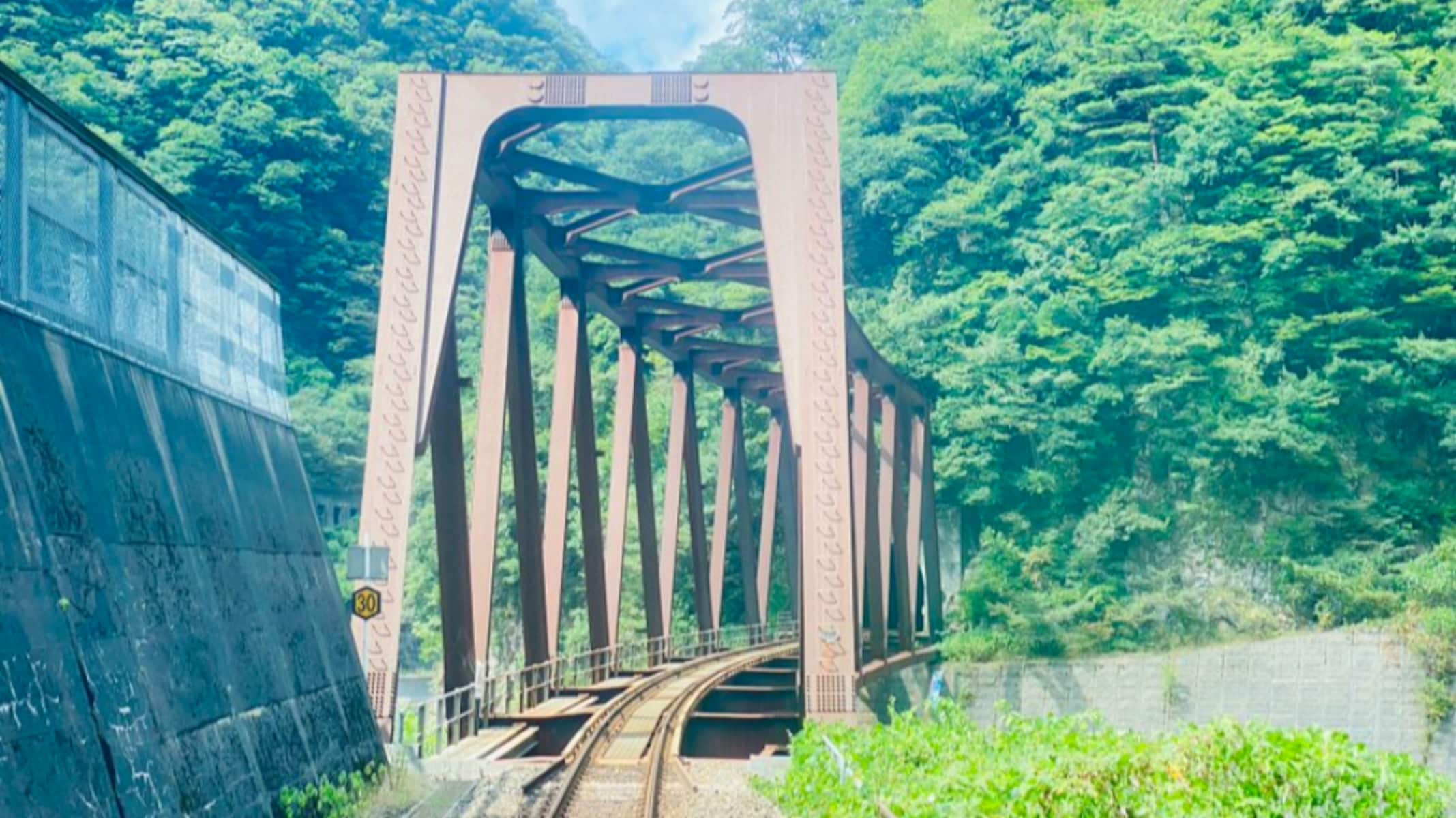 「エモすぎる」まるでアニメーション!新海誠作品に出てきそうな「鉄道」の写真に絶賛の声