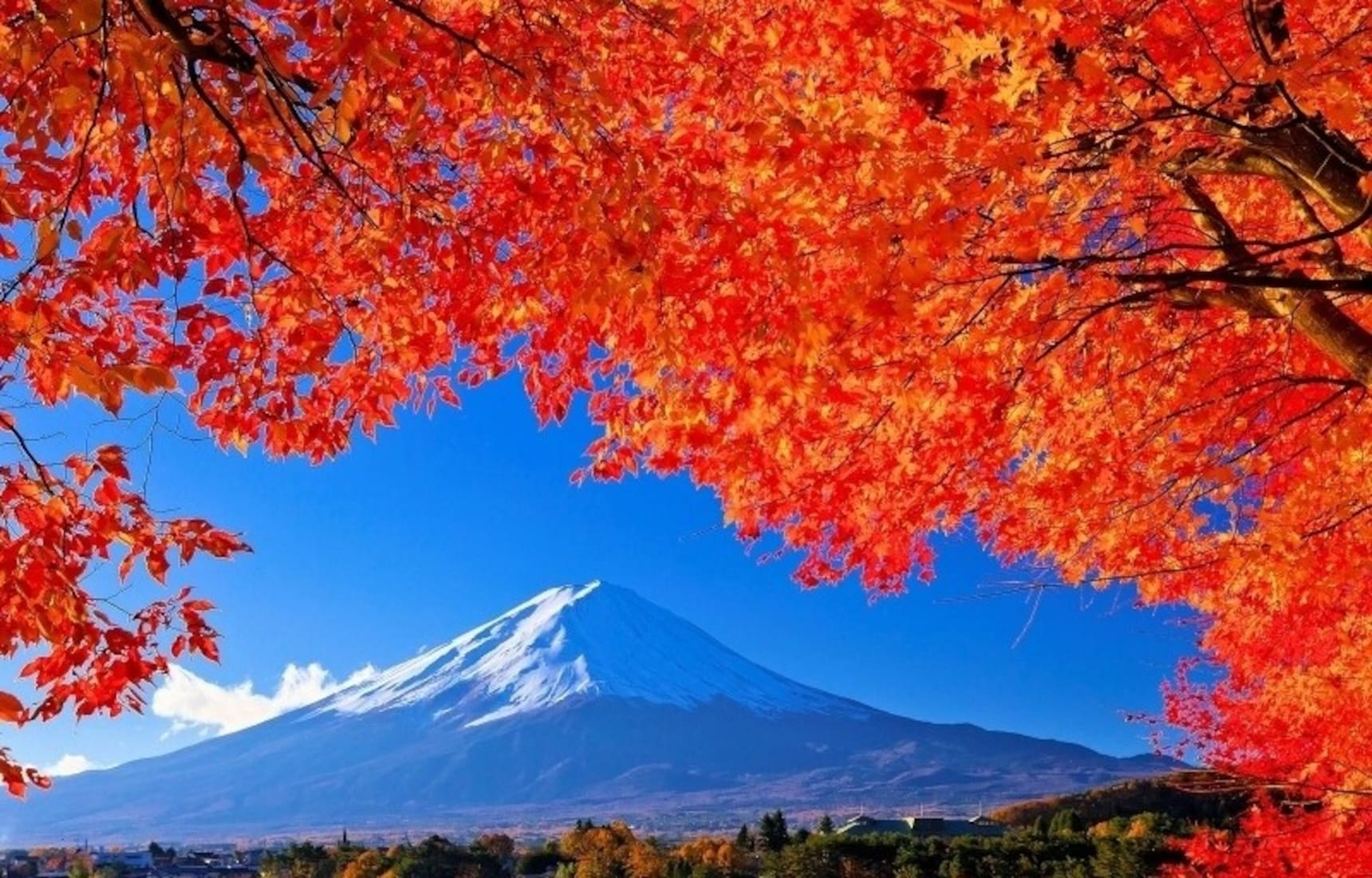 Top 5 Onsen for Fall Colors