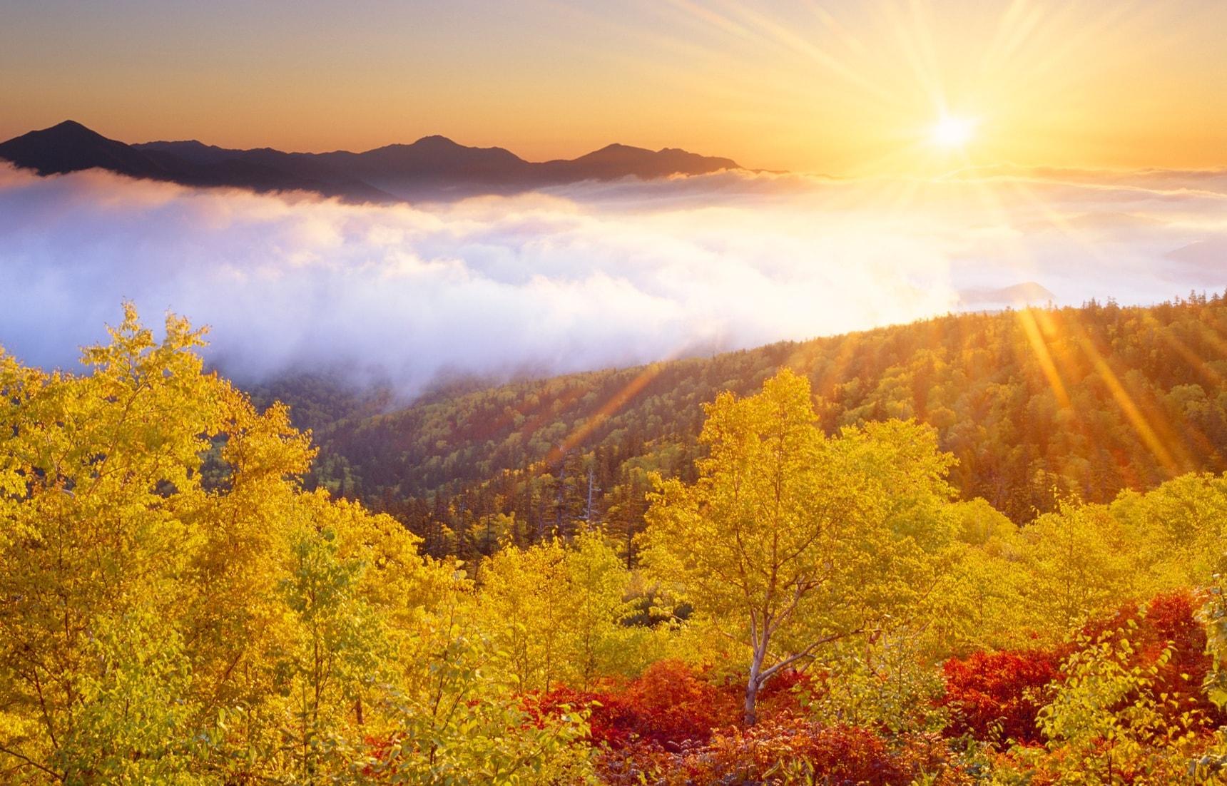 Autumn Starts in Daisetsuzan