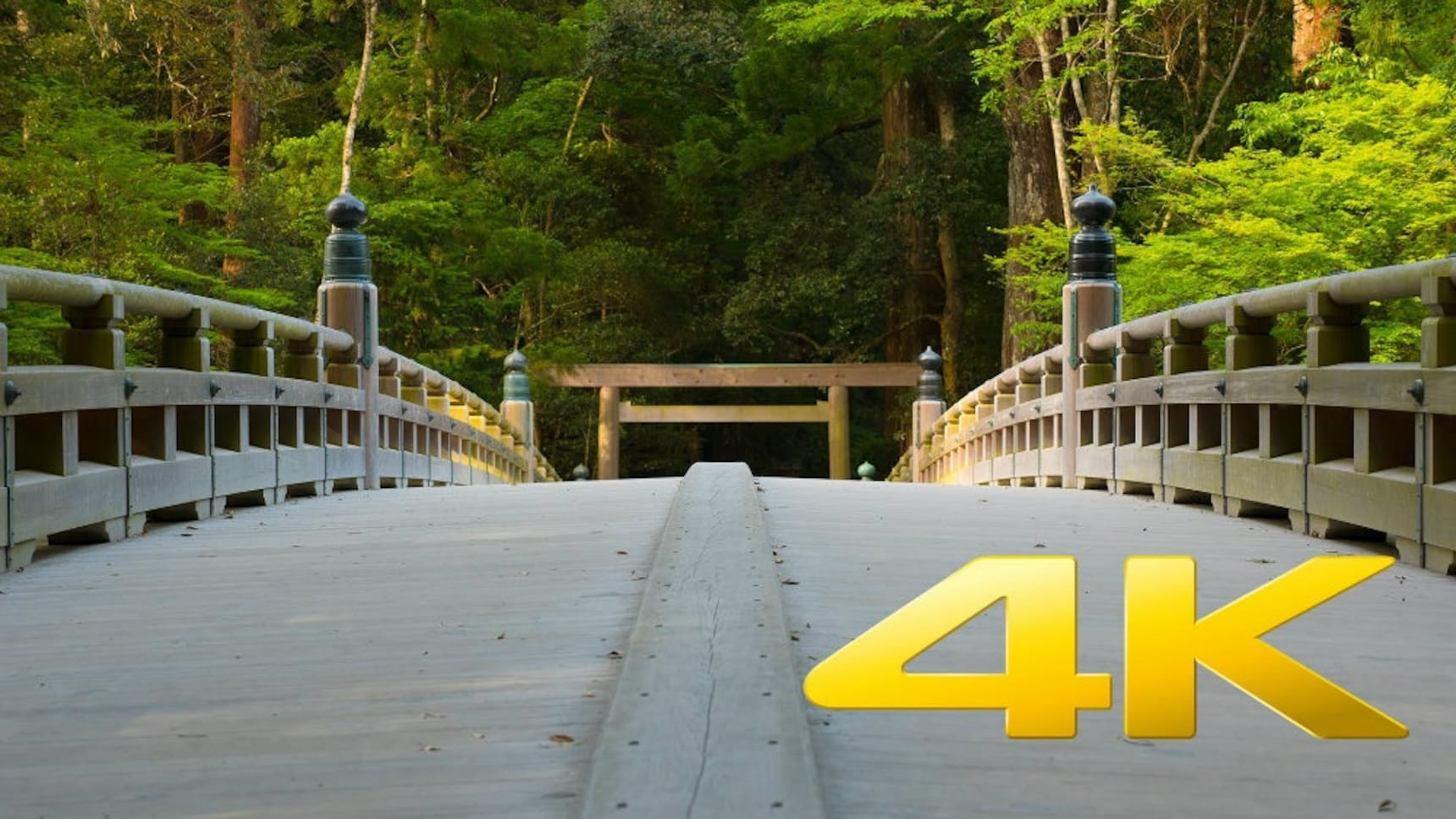 Experience the Beauty of Japan in 4K!