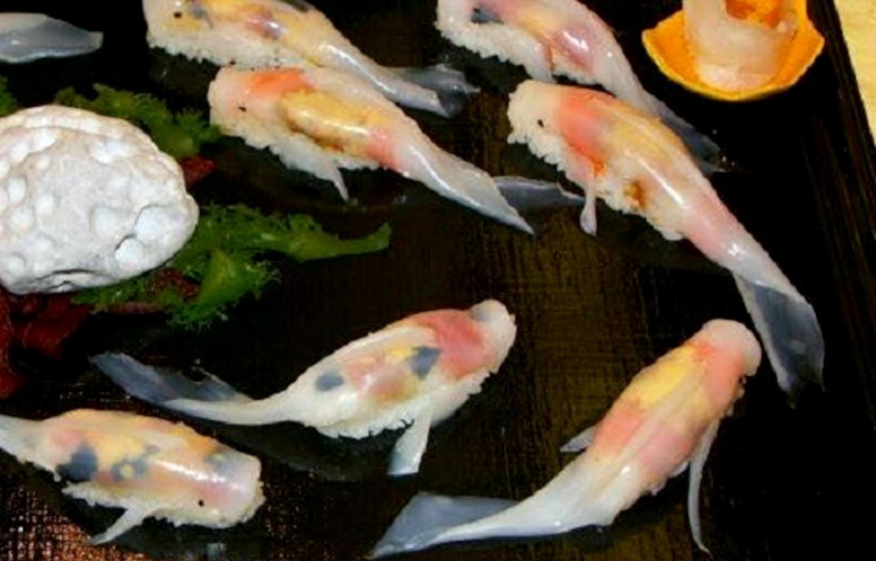 Koi-Shaped Sushi Will Make Your Head Swim
