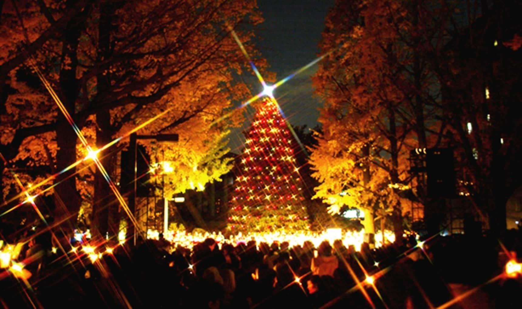 不出校园也能过原味圣诞:5所日本教会大学名门巡礼