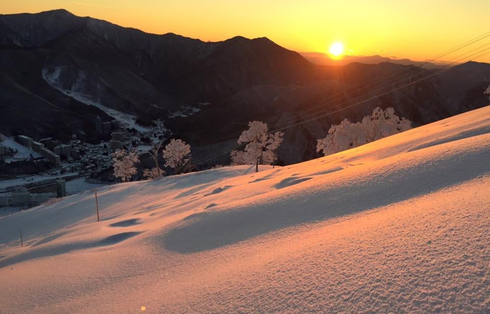 Niigata Ski & Snowboard Guide