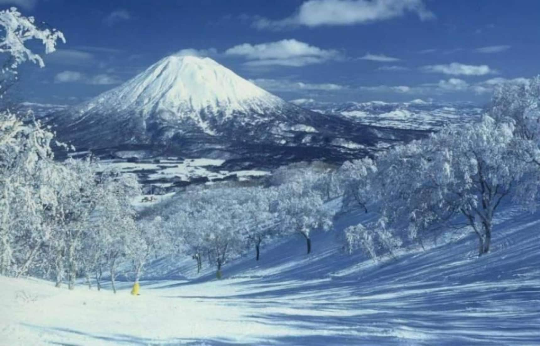 The 5 Best Ski & Snowboard Locations in Japan