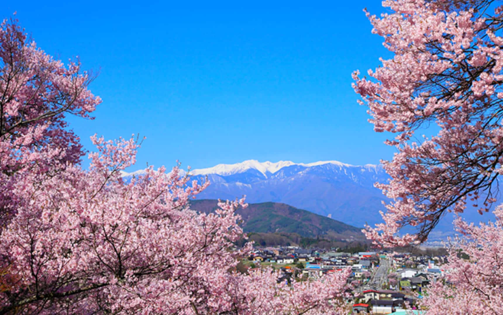 The Wonderful Seasons & Colors of Japan