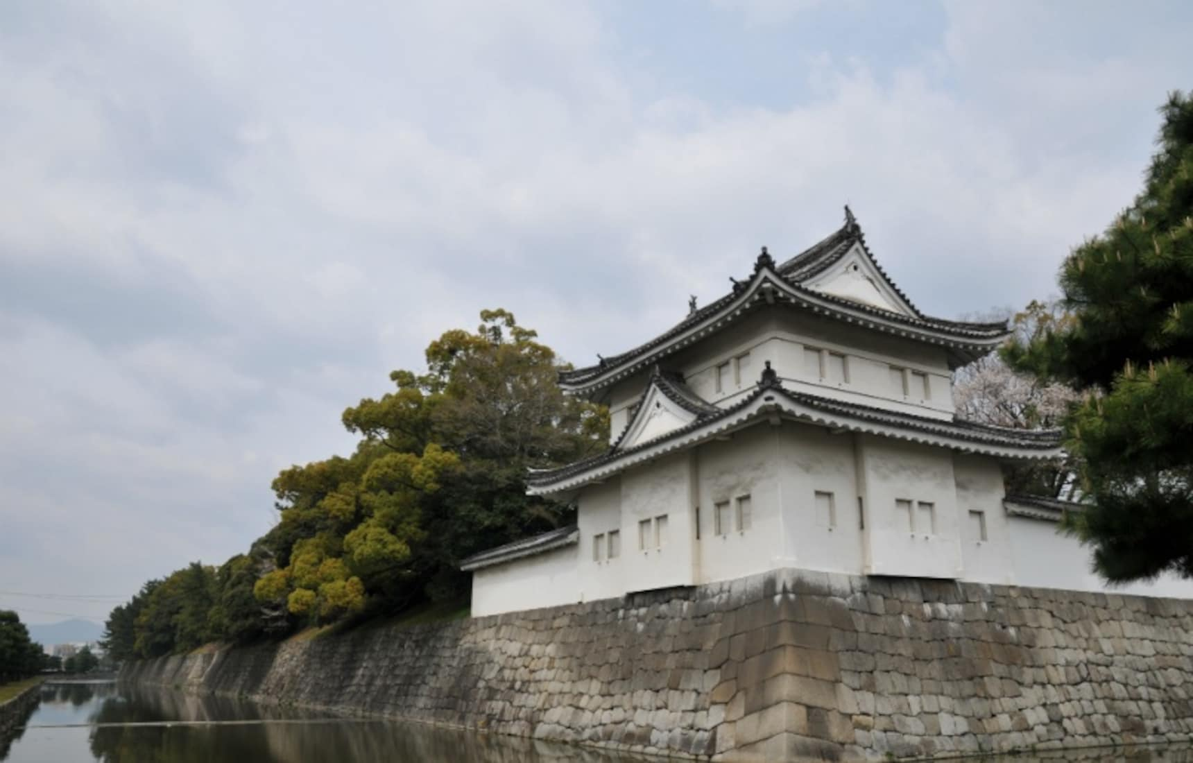 How to Ninja-Proof Your Castle