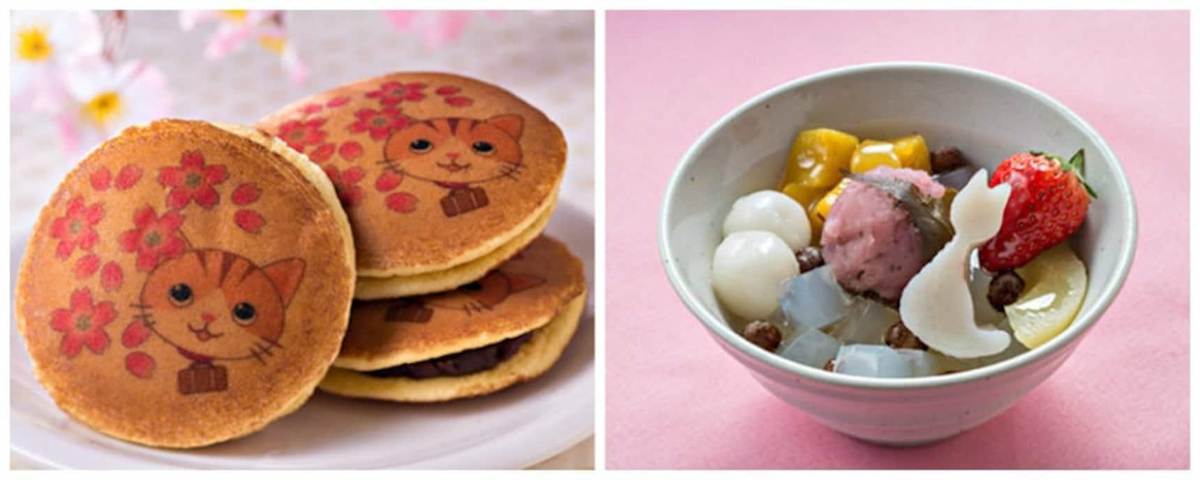 귀여운 디저트의 세계: 고양이 그리고 벚꽃!?