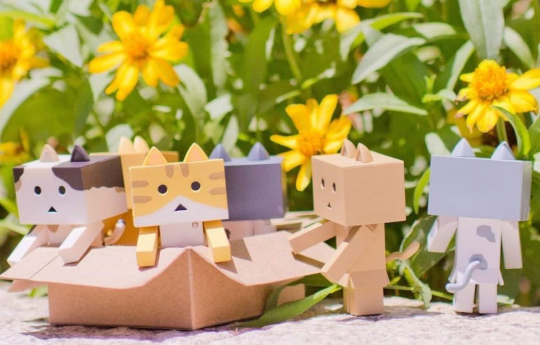 A Litter of Cute Cardboard Kitties!