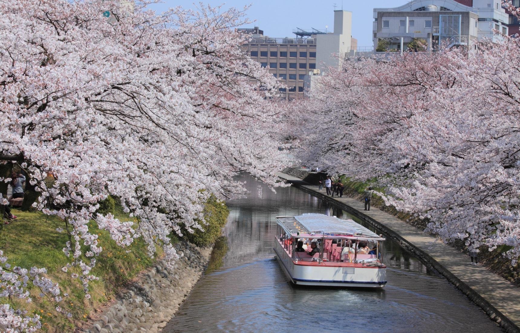 Hasil gambar untuk matsukawa river