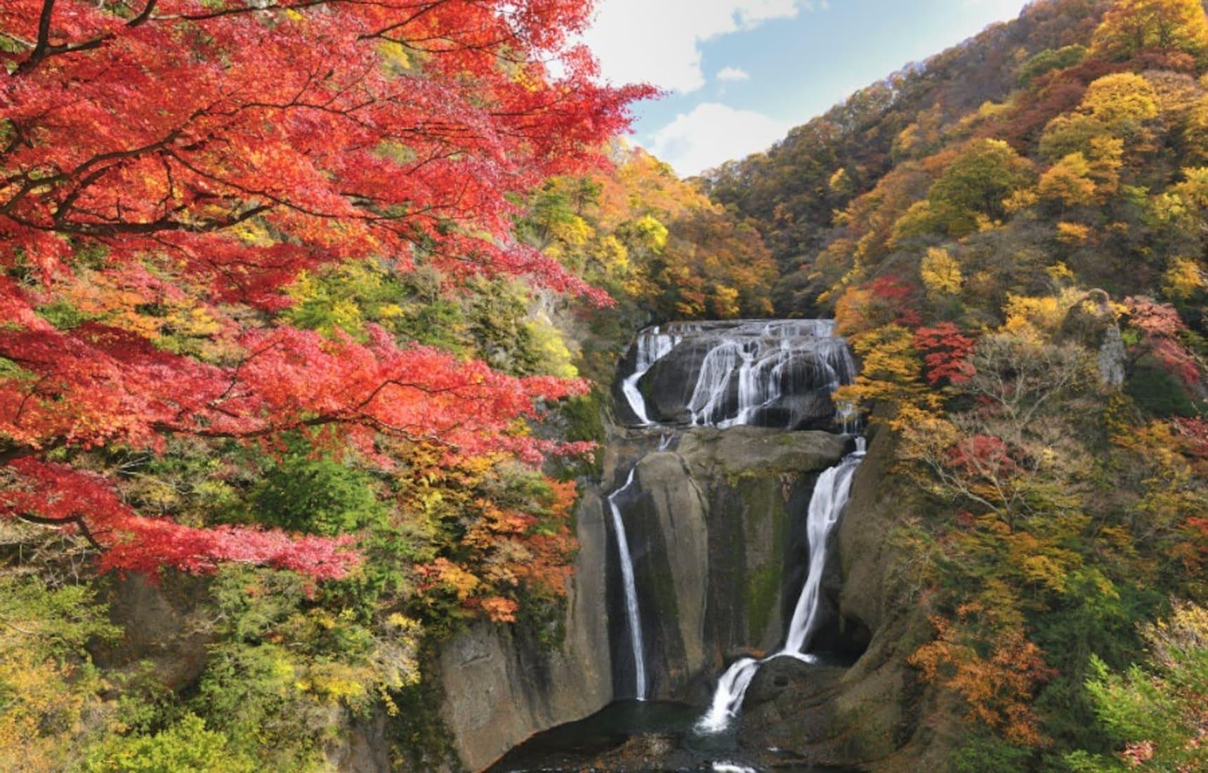 Gardens, Waterfalls & Onsen in Ibaraki