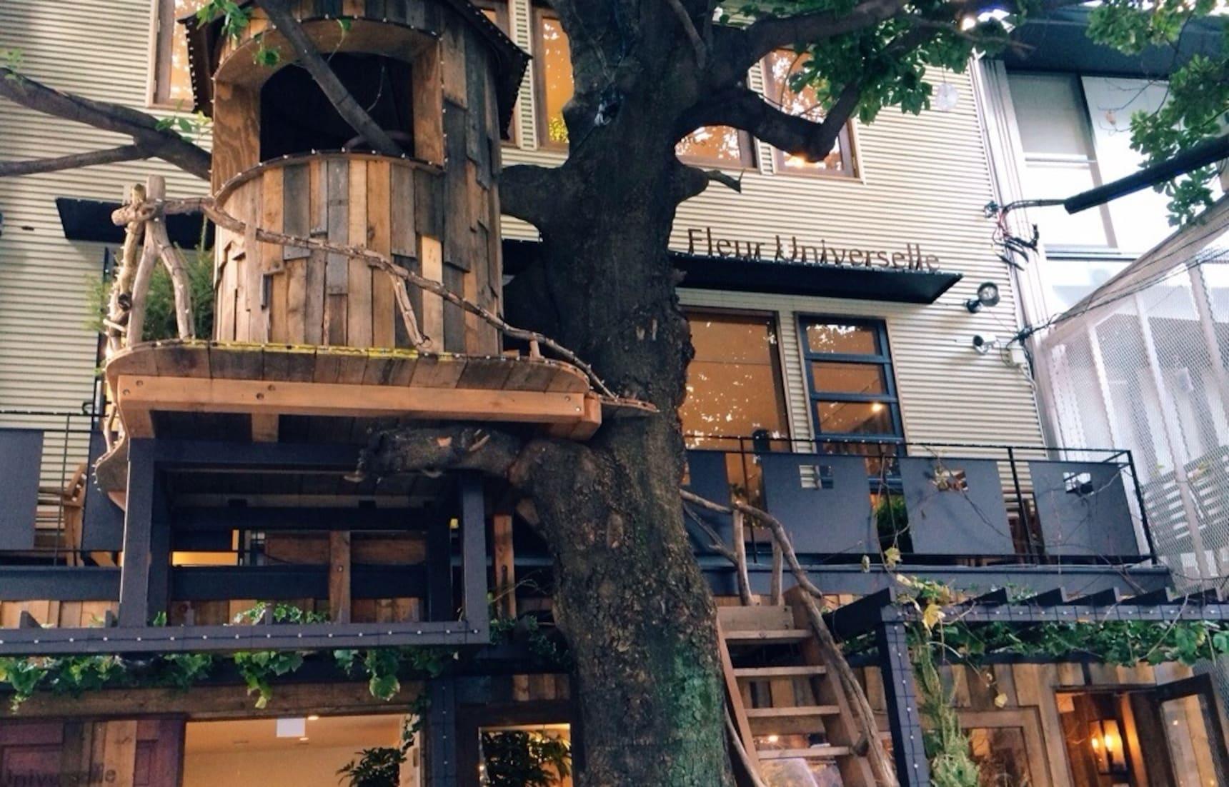 與樹共生的建築空間|廣尾的夢幻樹屋咖啡廳「Les Grands Arbres」