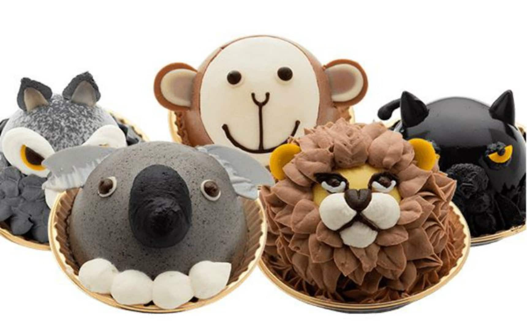 Lions & Tigers & Bears—on Cakes—Oh My!