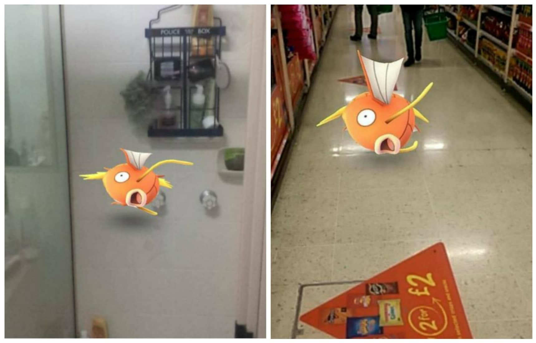 Magikarp Appears in Undignified Places