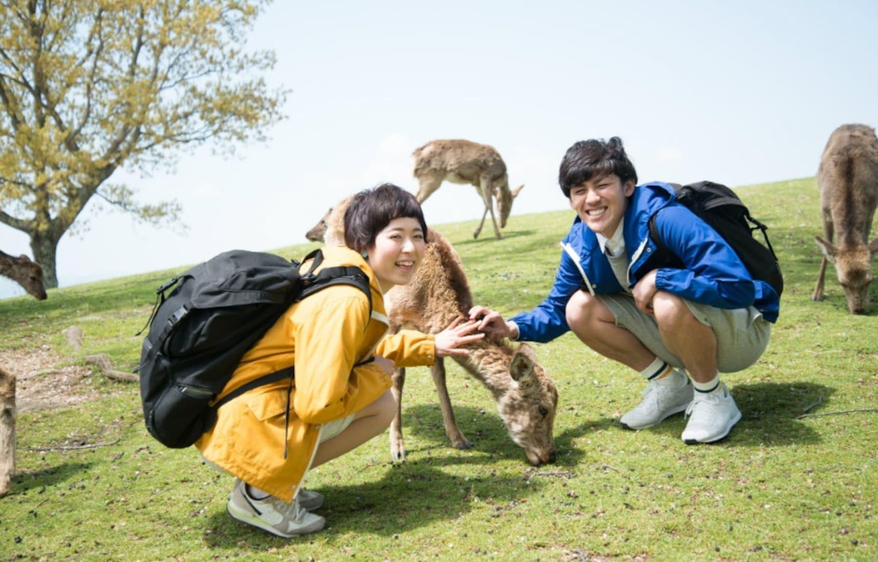 6 Free Tour Guides in Nara