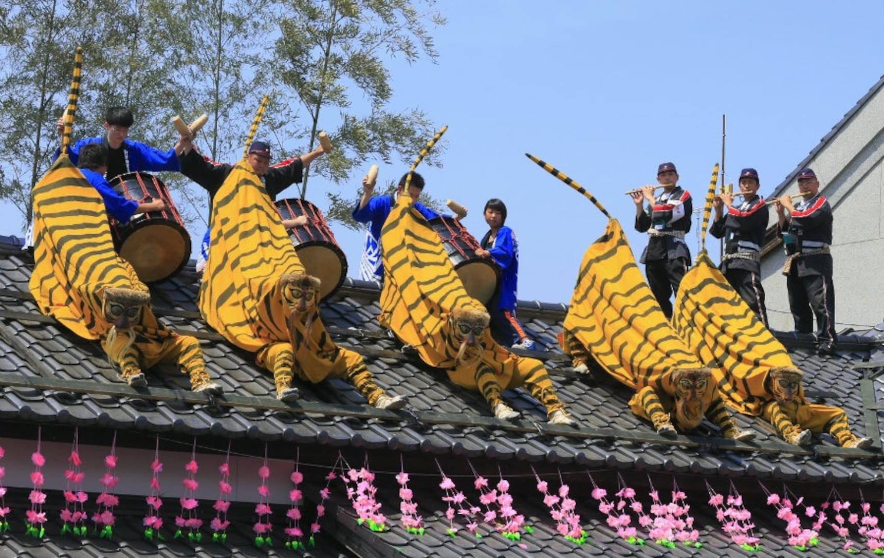 3 Animal Dances in Miyagi