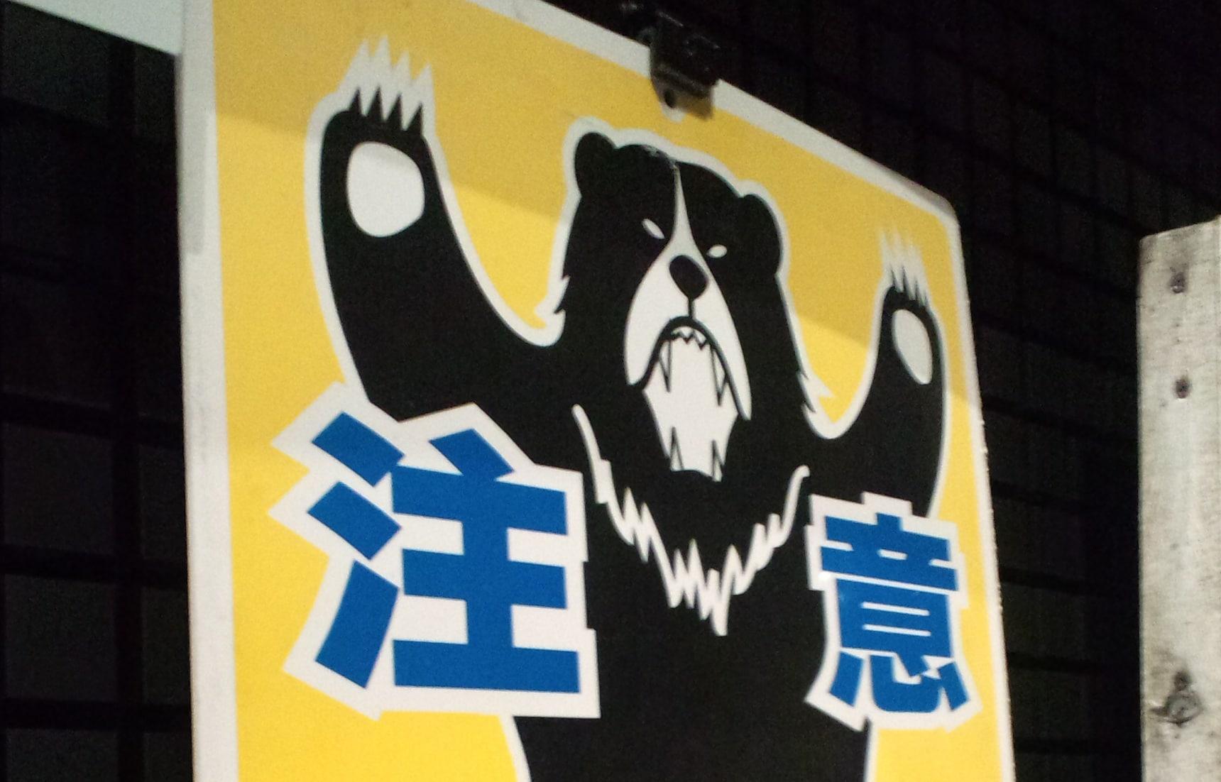 Hikers, Beware the Bear!