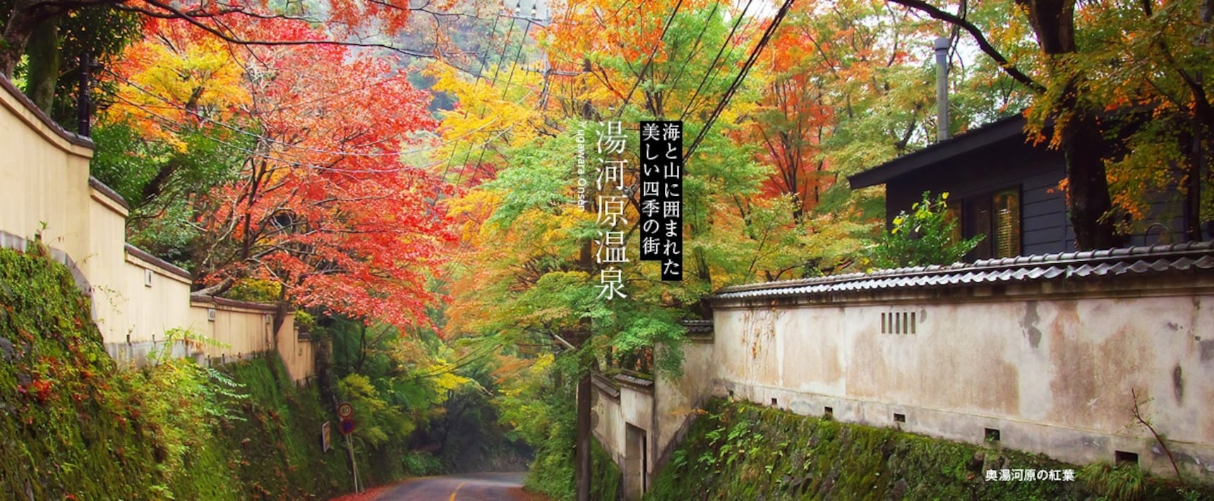 3 Awesome Autumn Events in Yugawara Onsen