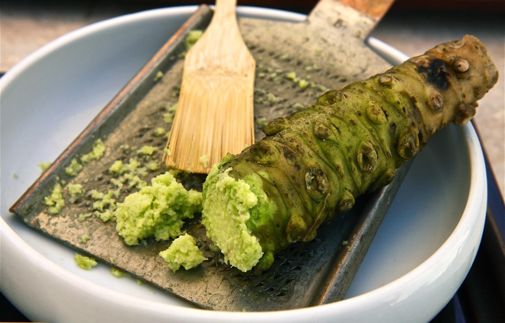 일식 상식: 초밥에 들어가는 식재료 「와사비 (わさび)」