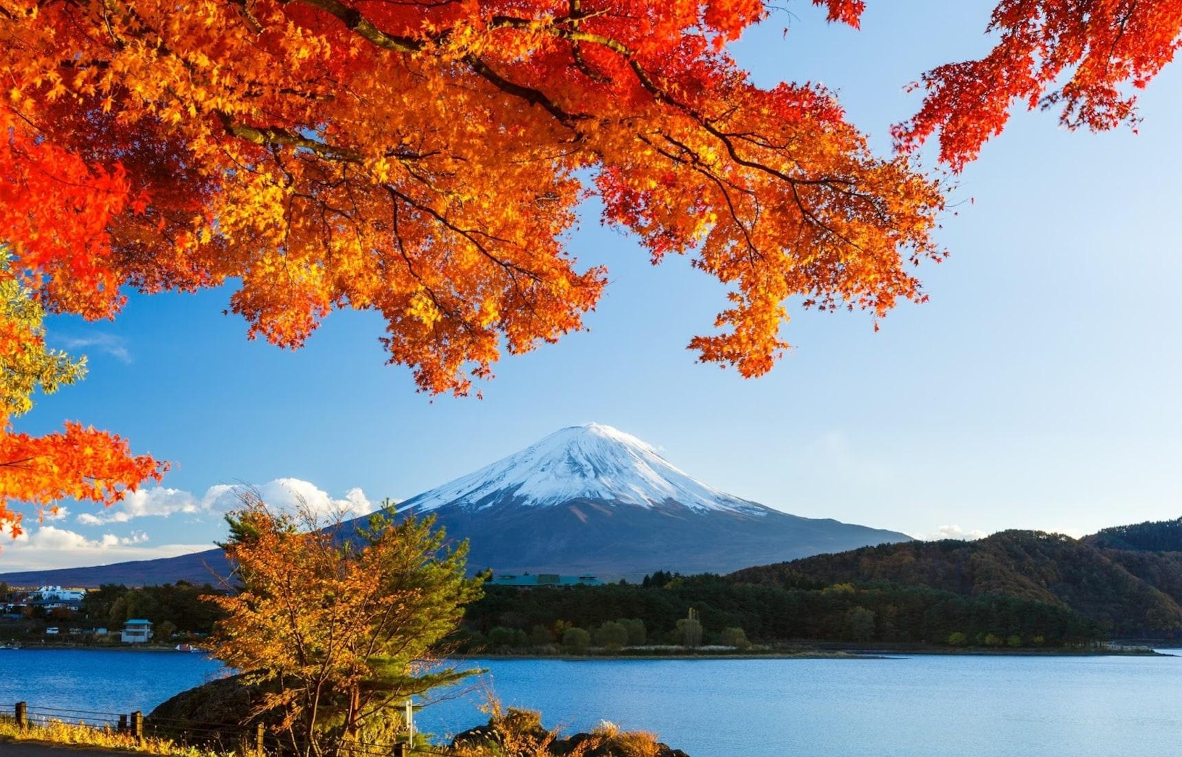 7 กิจกรรมยอดฮิตของคนญี่ปุ่นยามใบไม้เปลี่ยนสี