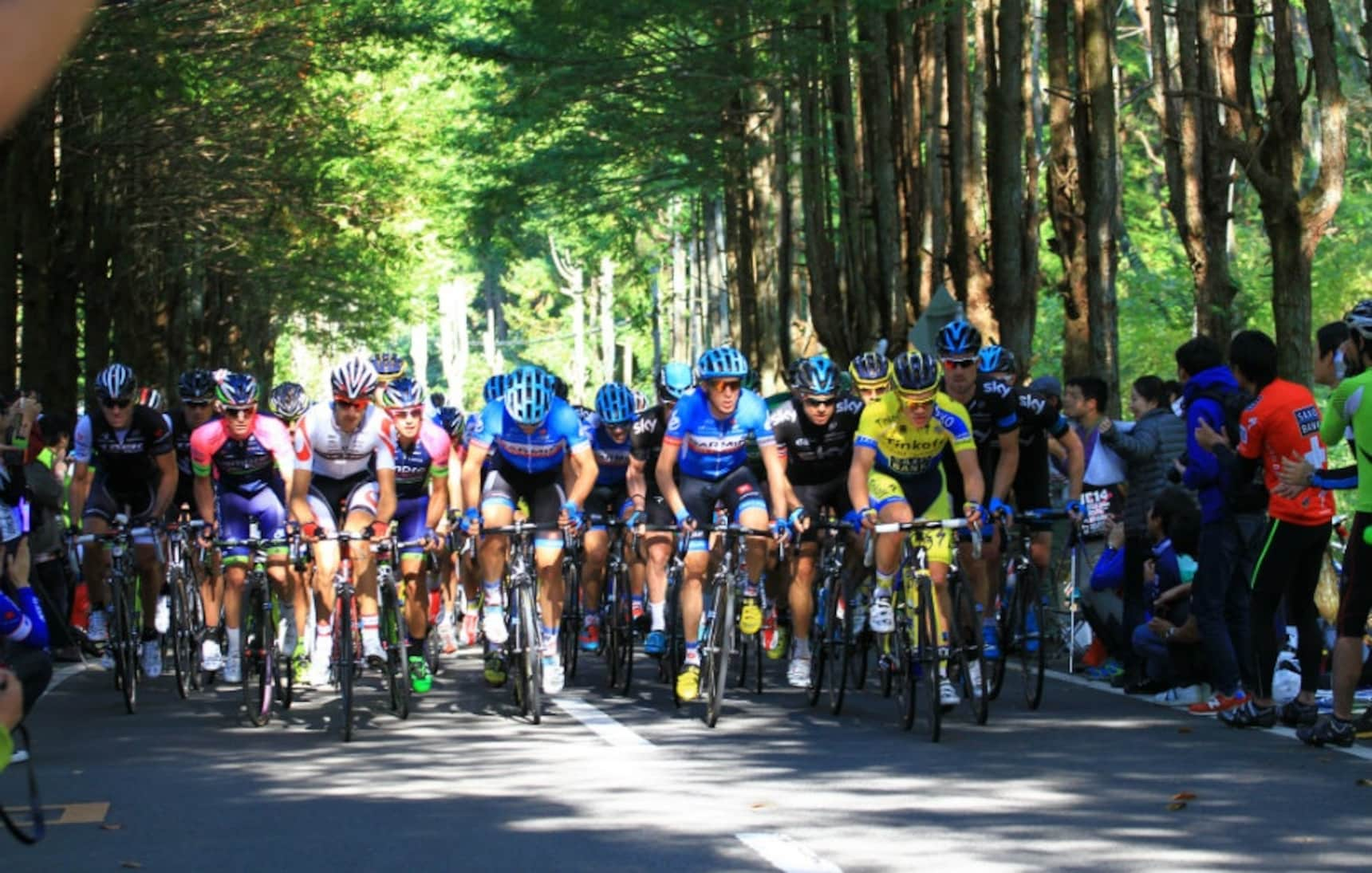 11 Lesser-Known Sporting Competitions in Japan