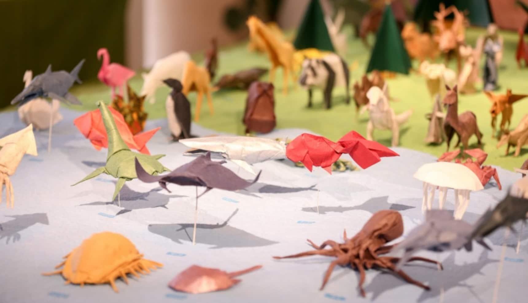 Origami Challenge at Ochanomizu Origami Kaikan