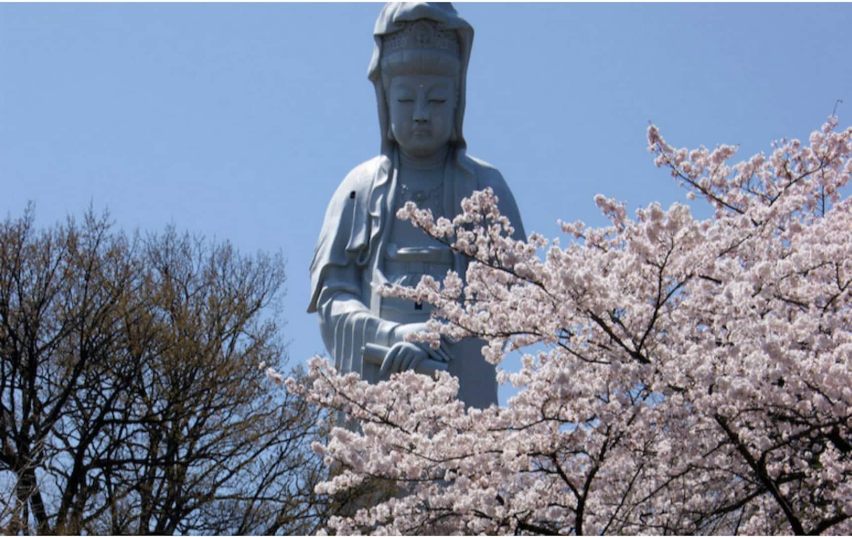 Experience the Wonder of Takasaki