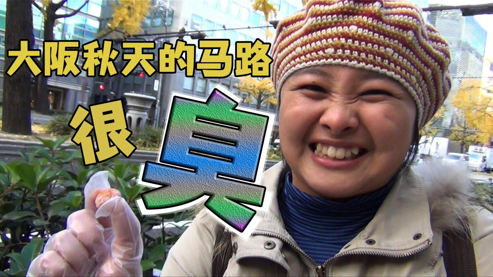 怎么搞的,大阪秋天的马路很臭!?