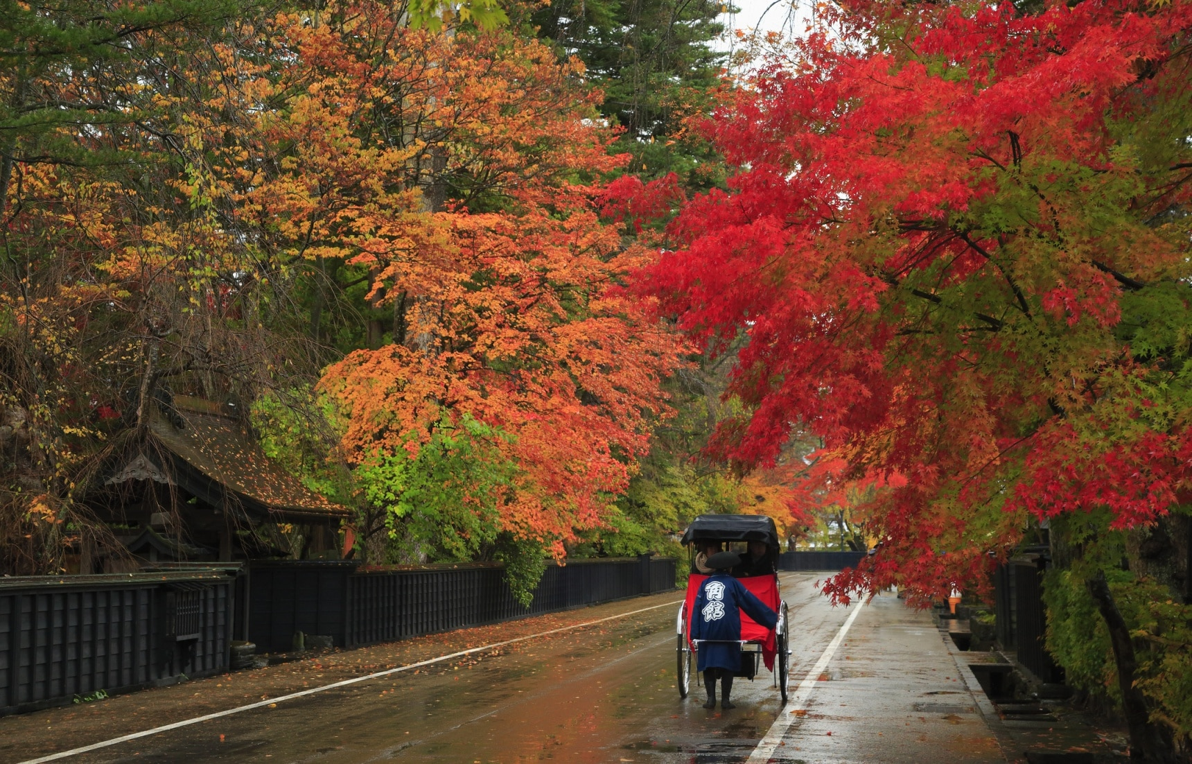 Super Cheap Japan's Top Fall Spots in Tohoku