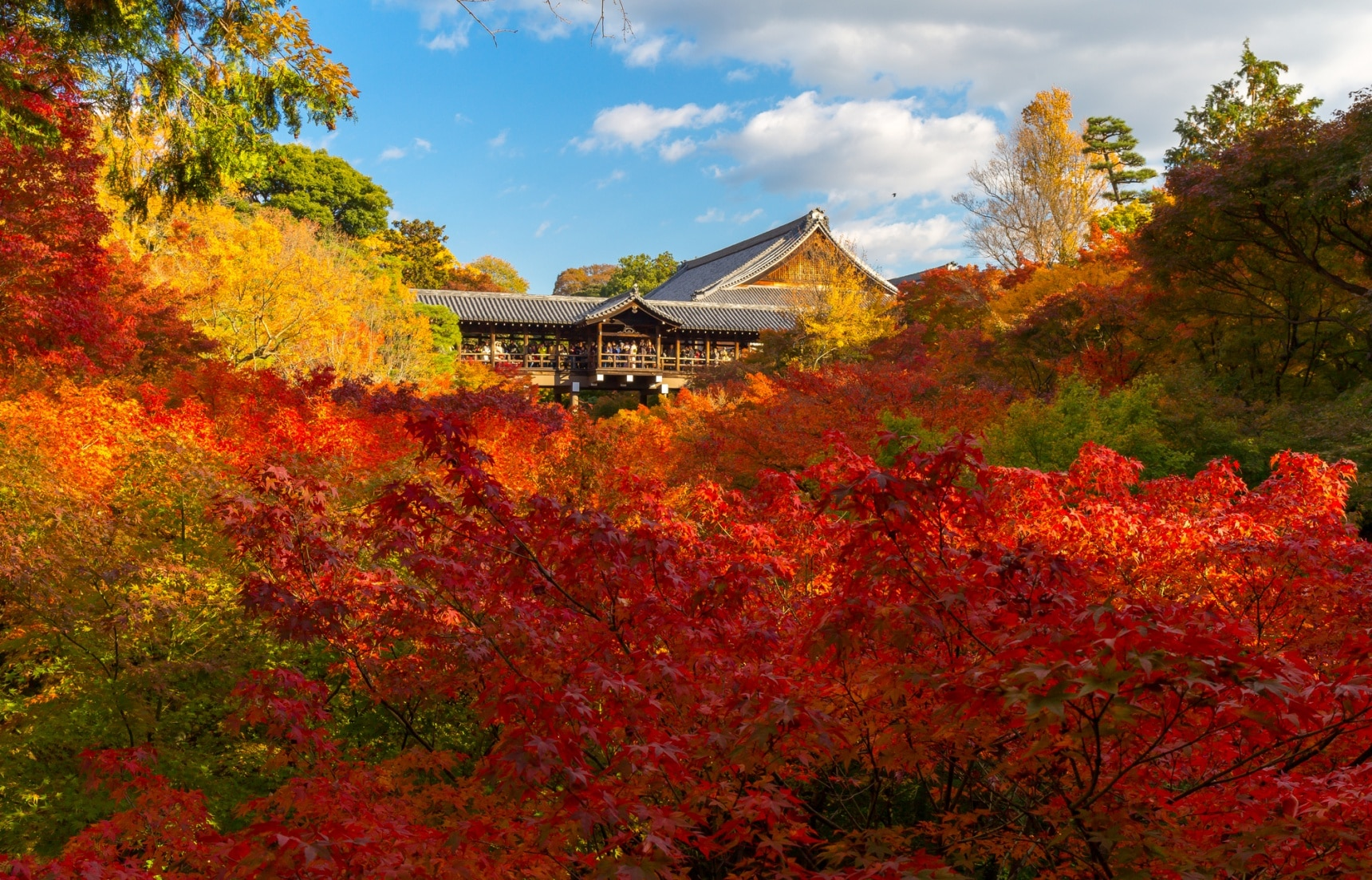 10 Awesome Spots to View Autumn Foliage
