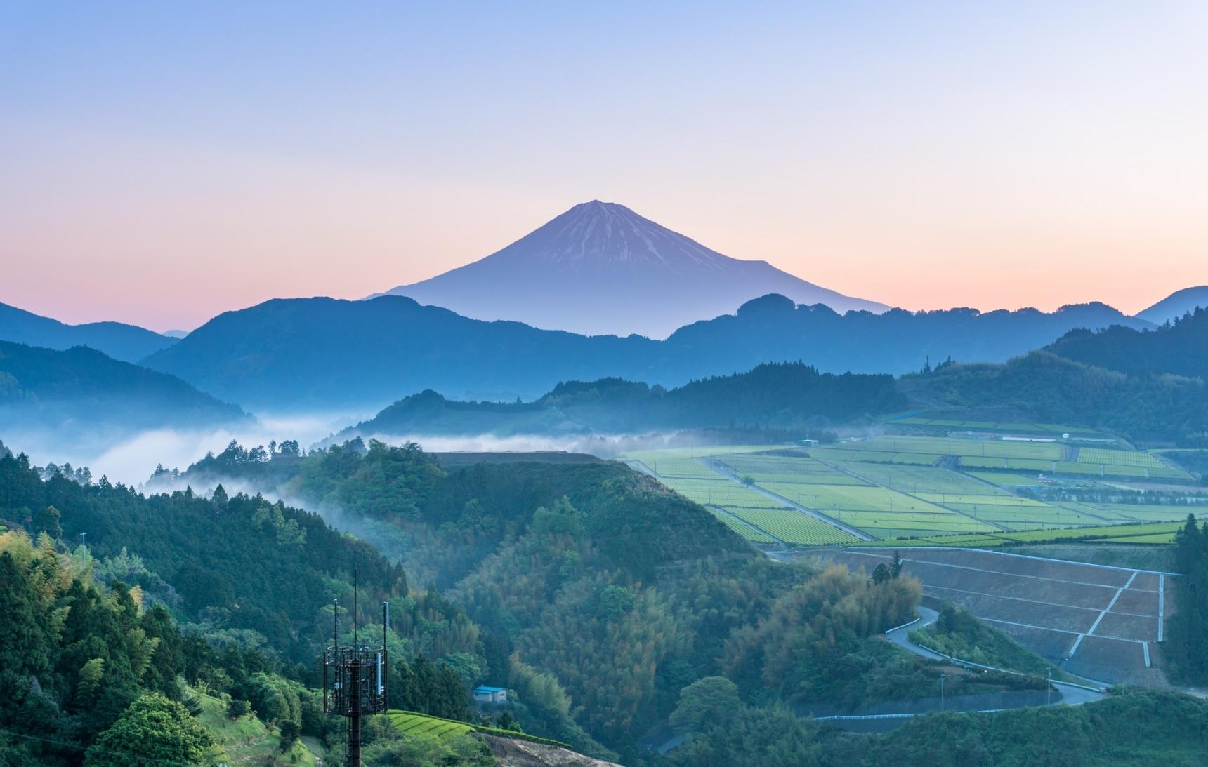 Stunning Ryokan Views in Shizuoka