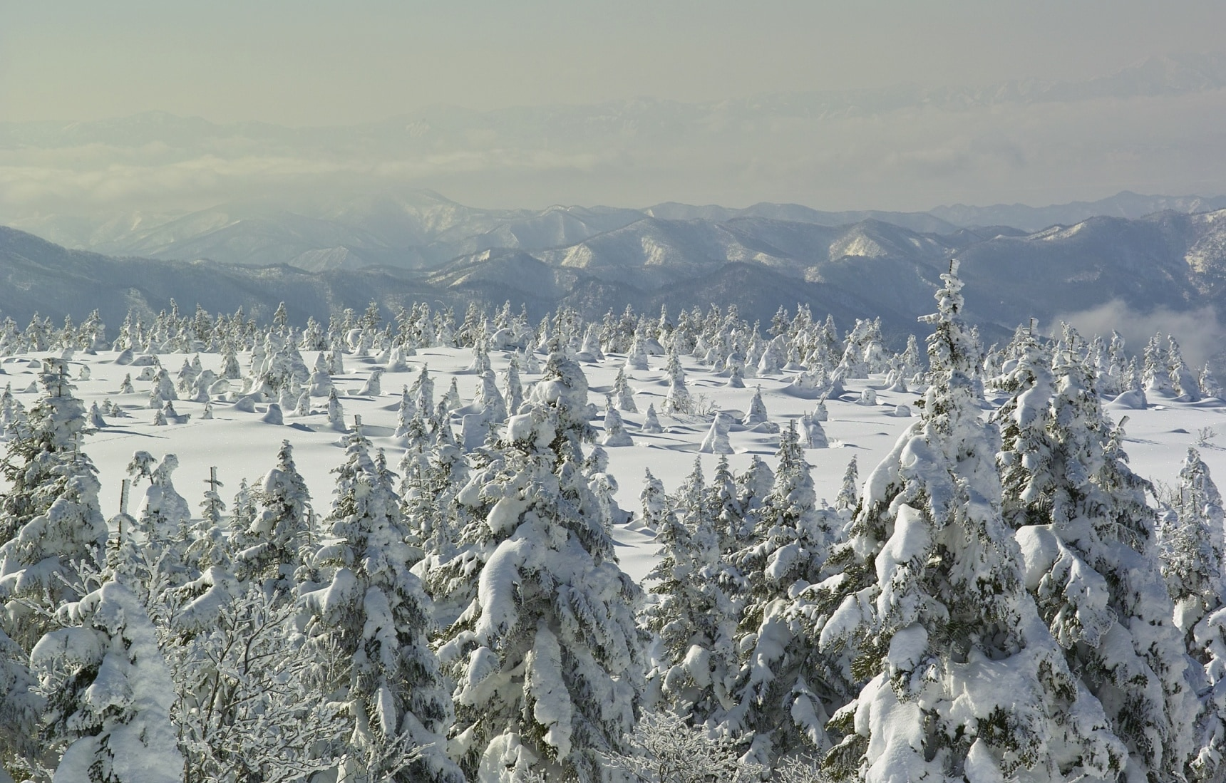The 6 Greatest Snowscapes in Tohoku