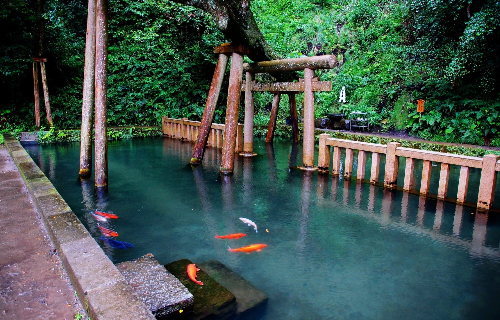 智游人|清池与锦里的故事,探寻鹿岛神宫的奥秘
