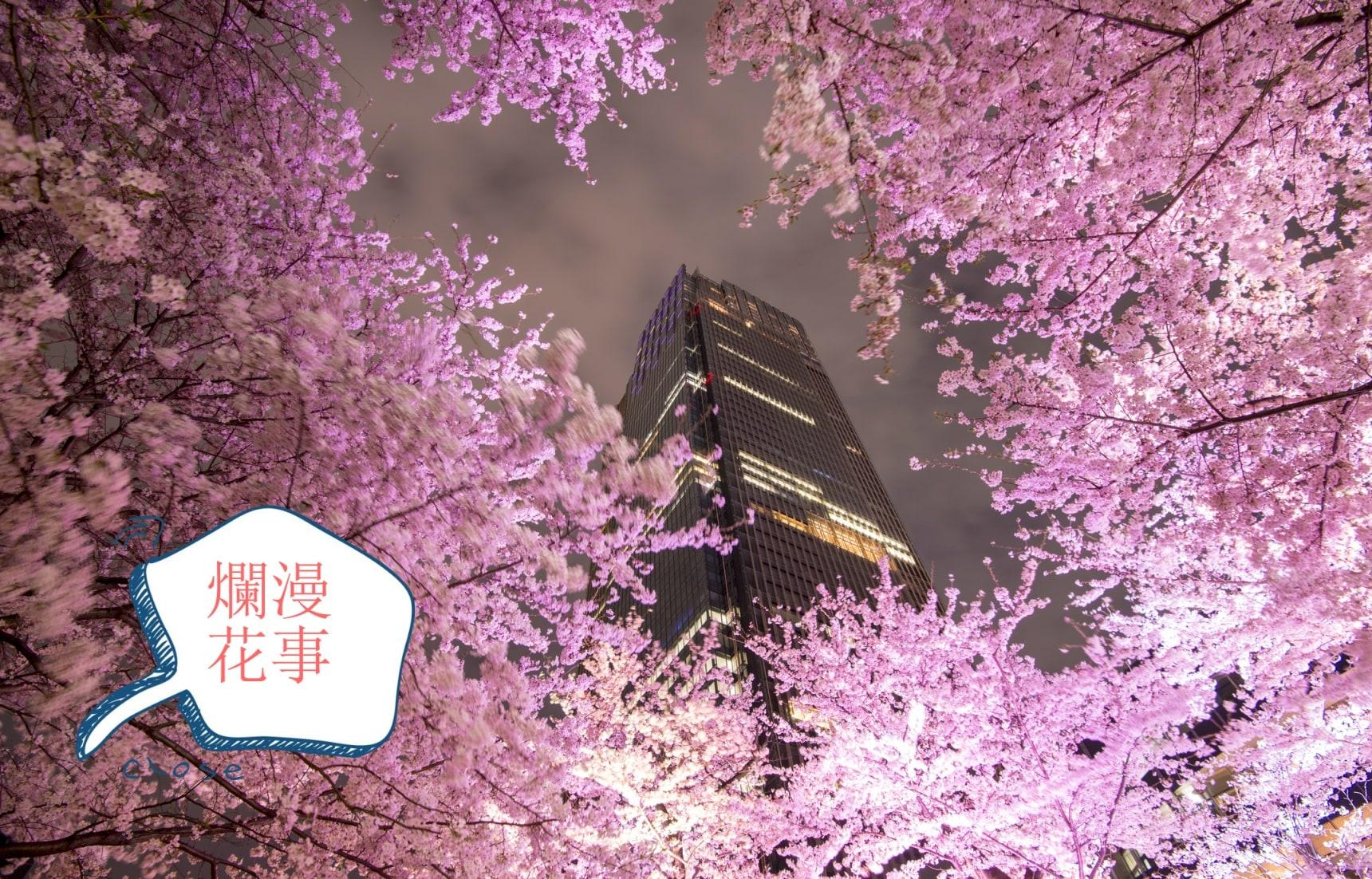 那一场烂漫绯红的「花事」— 东京赏樱名所5星指数推荐