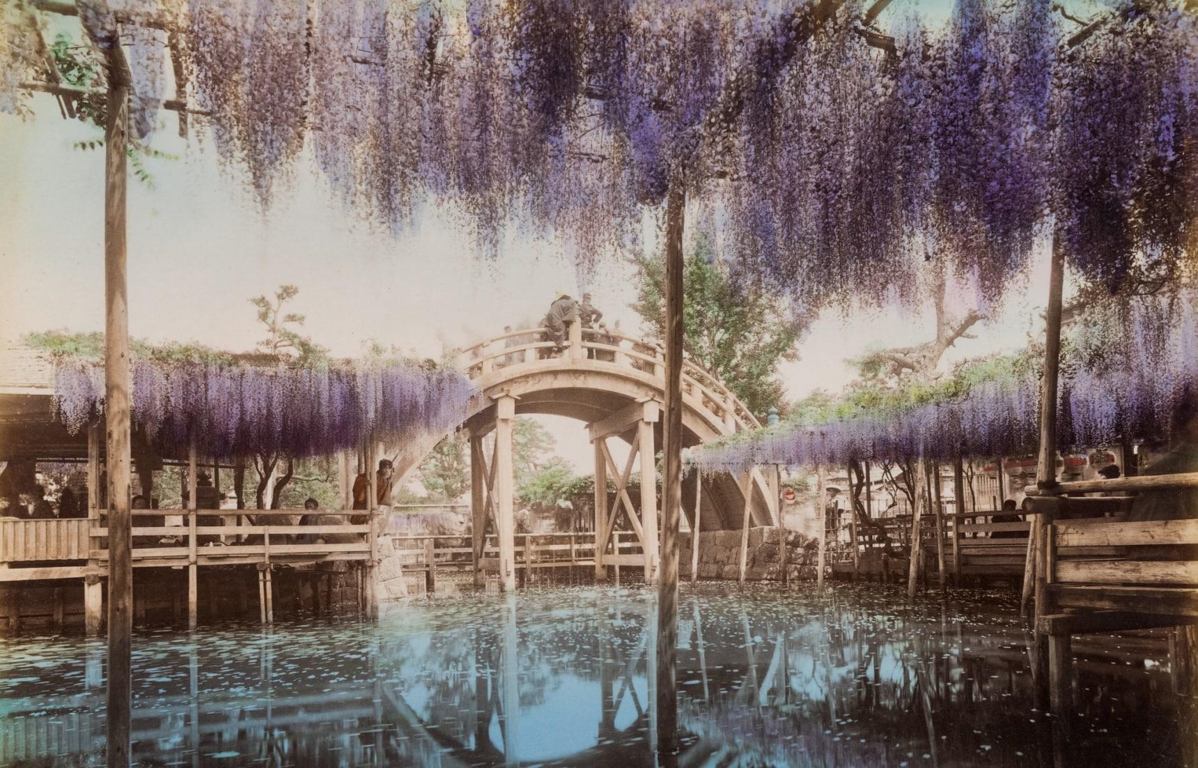 비욘드 시부야: 도쿄로부터의 일탈