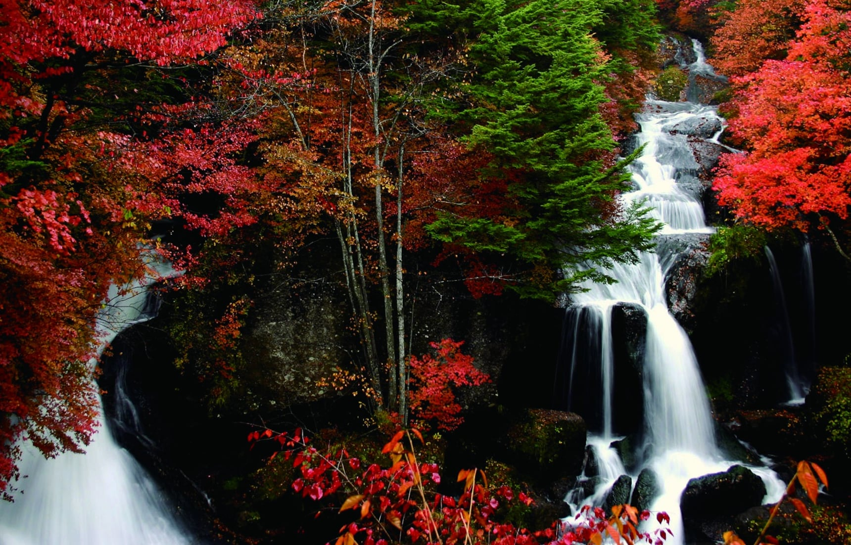 10 Things to Do in Tochigi in Autumn