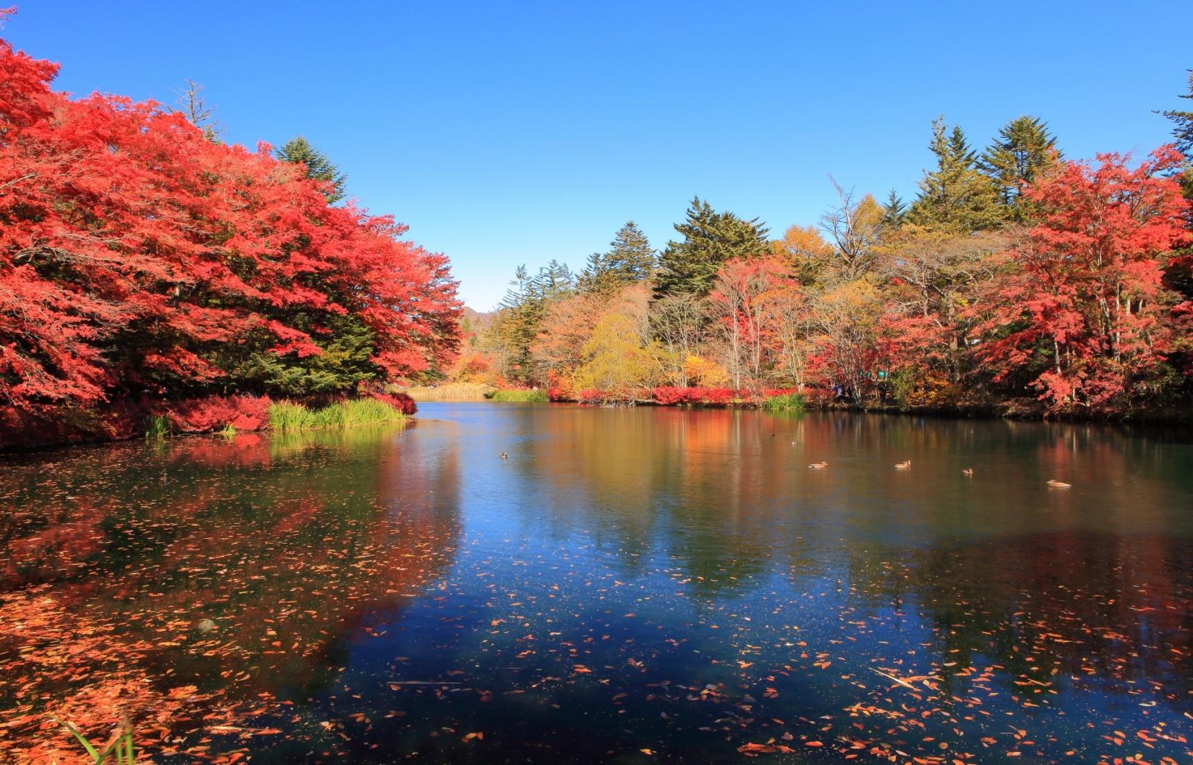 5 Outdoor Autumn Activities in Karuizawa