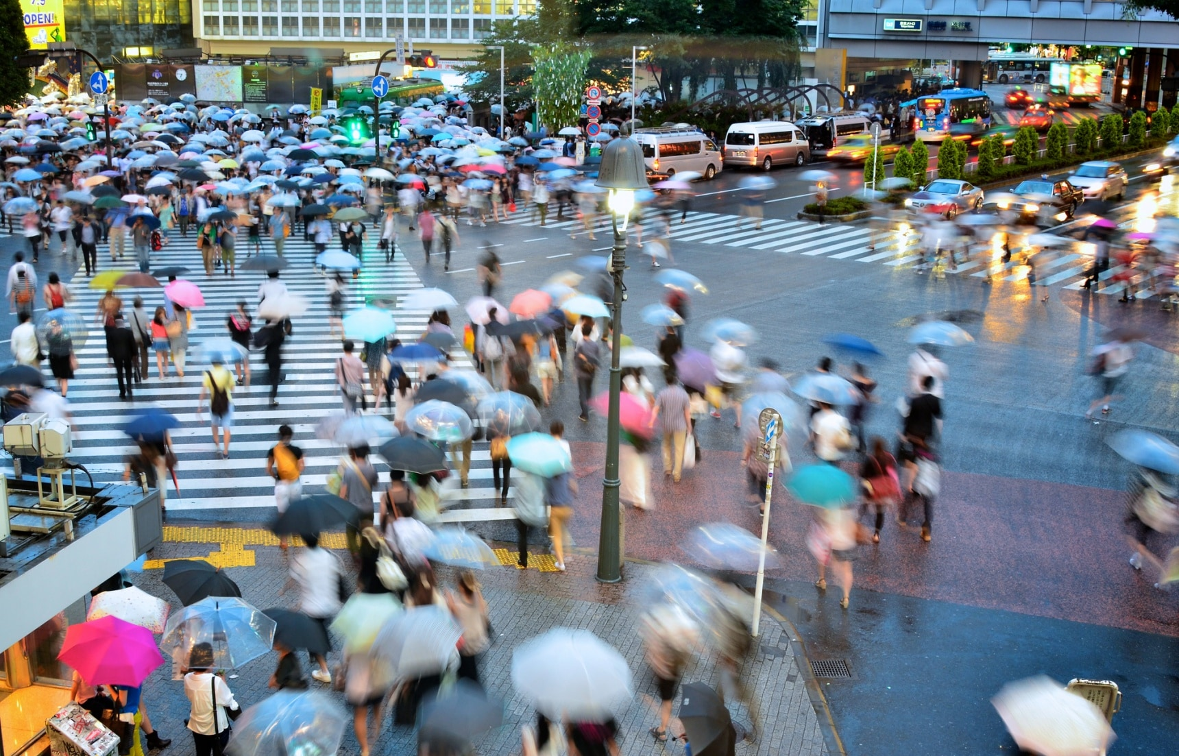 8 Free Things to Do on a Rainy Day in Tokyo