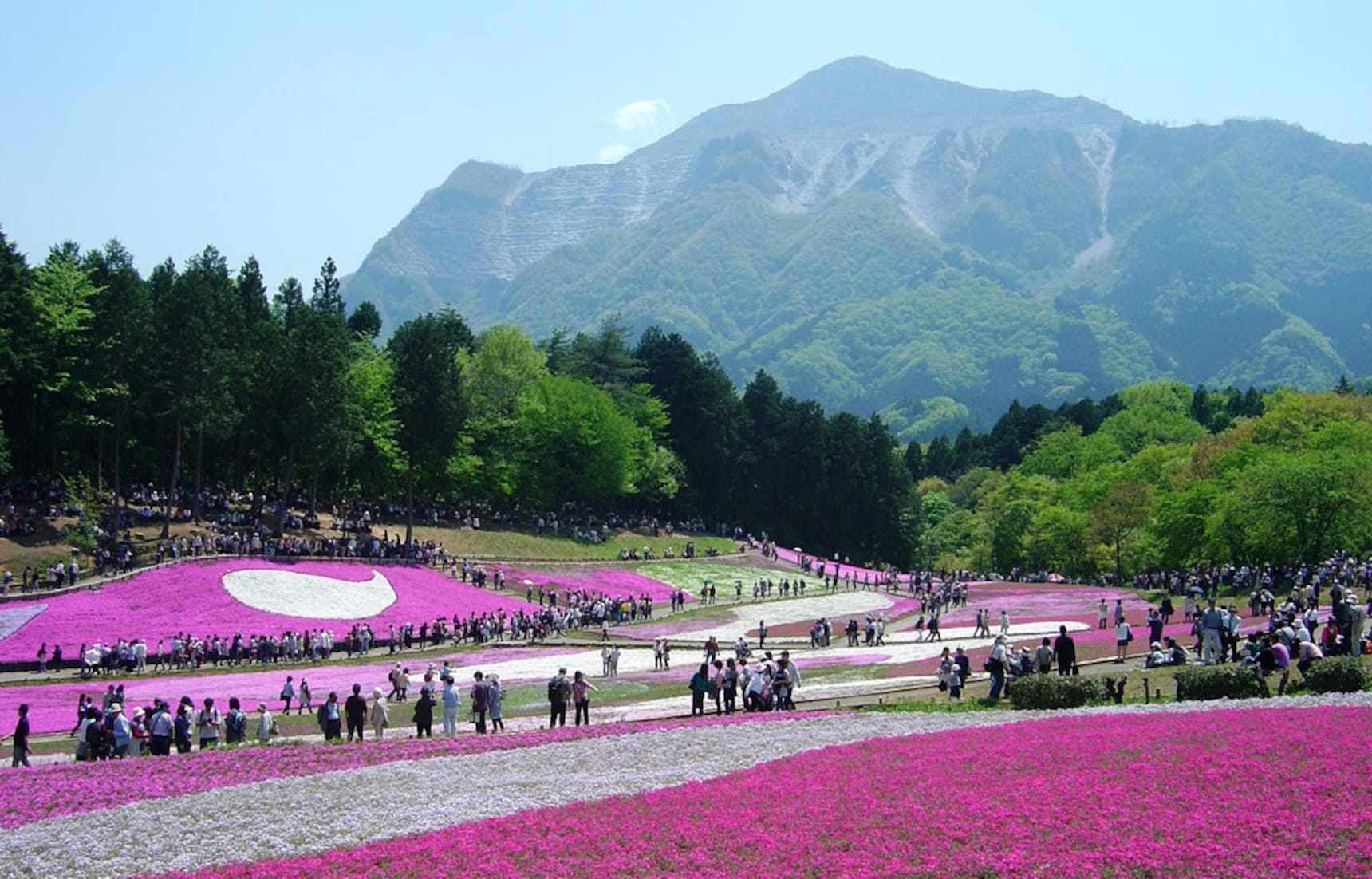 The 11 Best Things to See in Golden Week