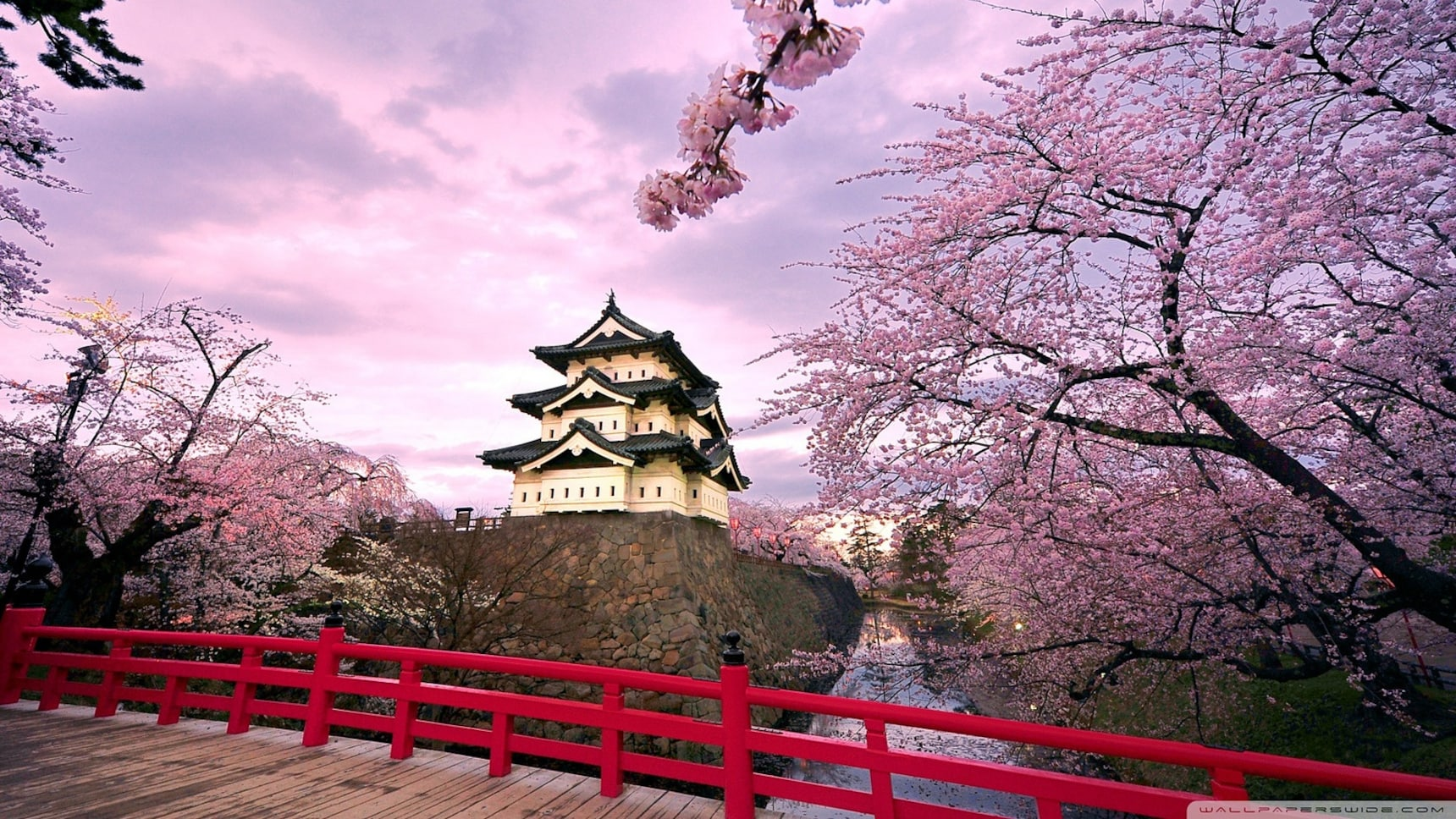 The 10 Best Spring Spots in Tohoku